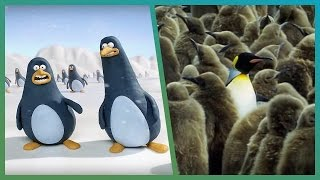 Penguins on Attenborough | BBC Earth Unplugged