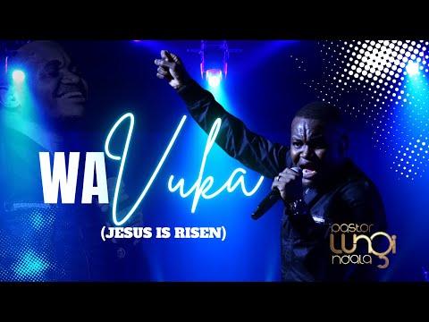 Pastor Lungi Ndala - Wa Vuka (He Rose)