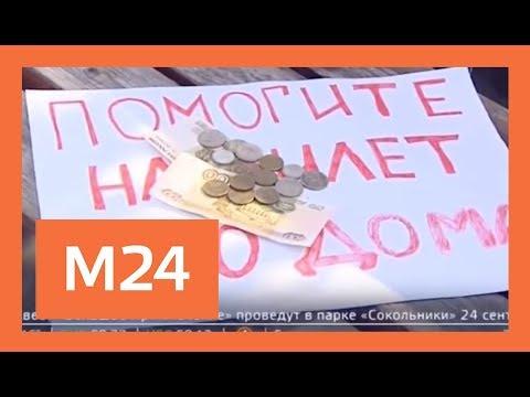 Прекрасные попрошайки появились на улицах Москвы