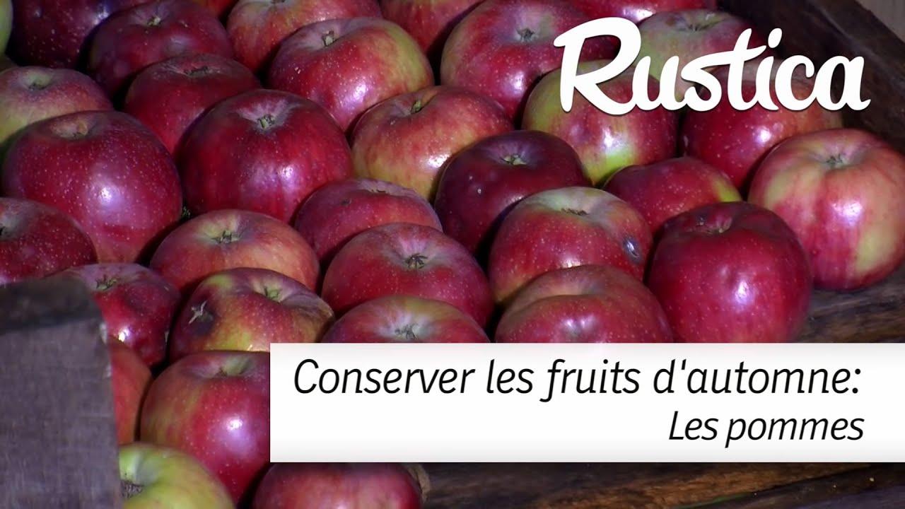 Comment conserver les pommes youtube - Comment conserver le radis noir ...