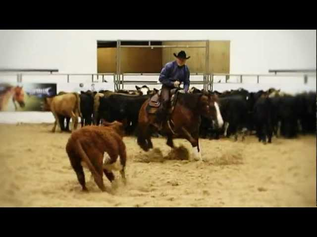 2011 Non-Pro World Champion Highlights