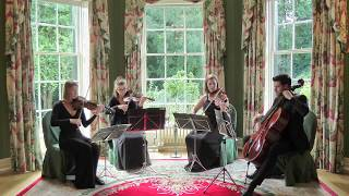 Love Me Like You Do Ellie Goulding Wedding String Quartet