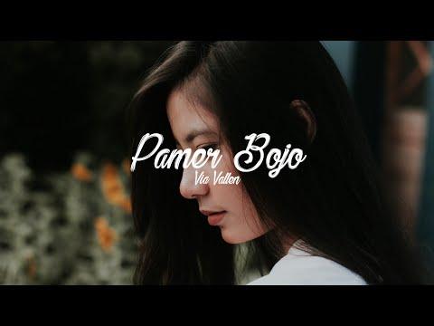 Download Pamer Bojo - Via Vallen cover  s Mp4 baru
