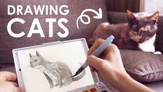 Drawing At Cat Cafe | LET'S GO!