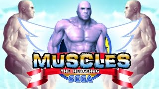 MUSCLES THE HEDGEHOG
