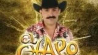 Vídeo 55 de El Chapo De Sinaloa