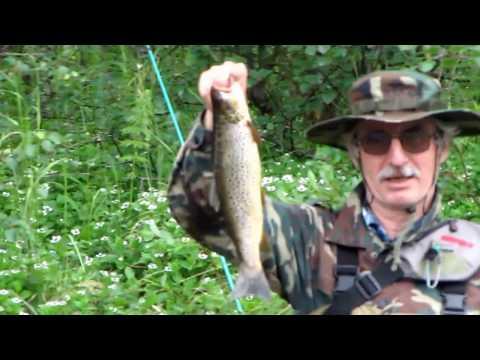 видео про рыбалка на кольском полуострове