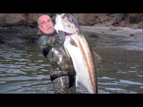 Pesca submarina serviola 009
