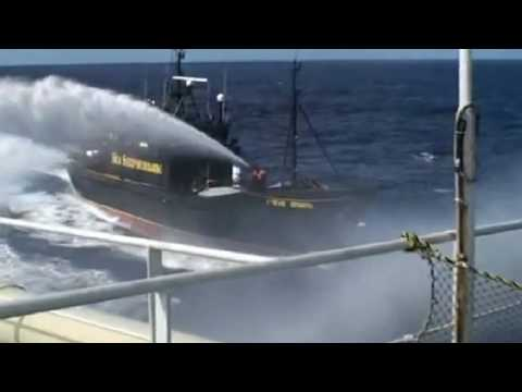 Sea Shepherd: Battle of the Antarctic Gateway