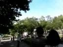 【行ってきました♪】旭山動物園 - 2008夏
