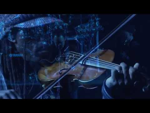 Dave Matthews Band - One Sweet World