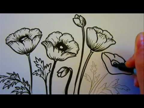 Flower Tutorial - How To Draw Flowers - Poppy Flowers