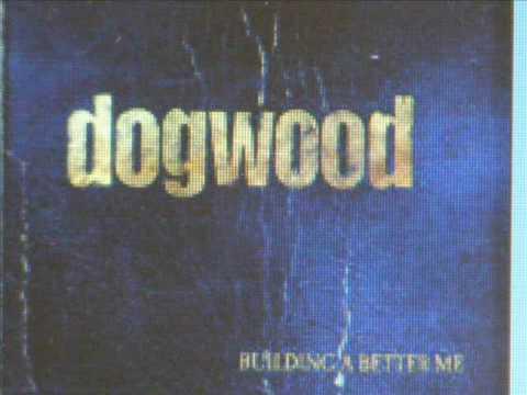 Dogwood - Mycro