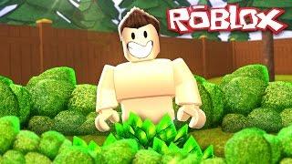 Roblox Adventures / Hide and Seek / Hiding Because We