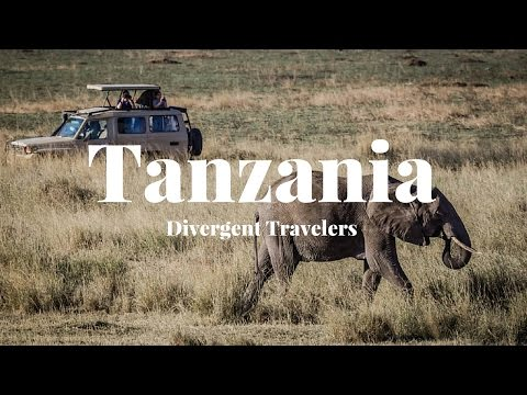 Travel Guide To Explore Tanzania With The Divergent Travelers