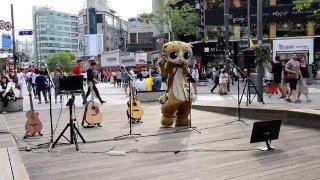 JHKTV]sin chon special cat dance 명물고양이   dance& song