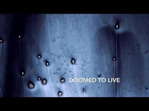 Mokadelic- Doomed To Live