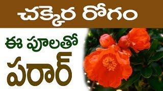 ఈ పూలు రోజు తింటే చక్కర రోగం పరార్|| Eat These Flowers Cure Diabetes In Just 5 Days #Diabetes telugu