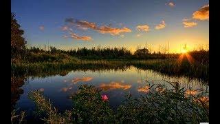 Viaggio nei parchi americani Everglades Avventure nel Mondo video di Pistolozzi Marco