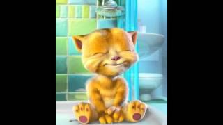 Talking Ginger ( Gute Nacht Freunde )