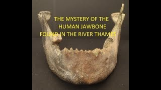 UK Mudlarking - The Mystery of the Human Jawbone found in the River Thames