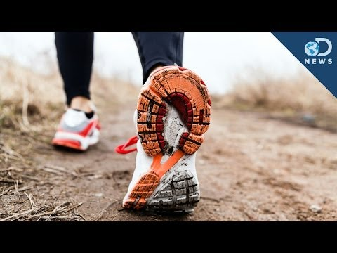 Why You Need To Walk 10,000 Steps A Day