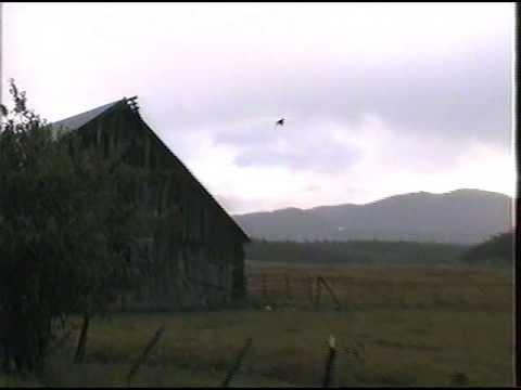 BATES - AUSTIN OREGON: Looking From Henry Ricco's Old Barn Toward Dixie Mountain
