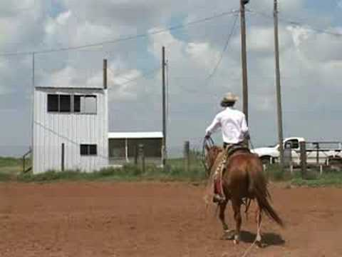 Horse Training - How To Do Horse Problem Solving