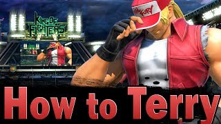Smash Ultimate: How to play Terry