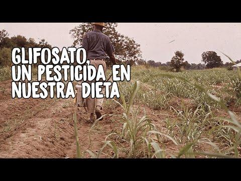 Glifosato, Un Pesticida En Nuestra Dieta