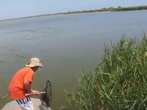 рыбалка в татарбунарском районе