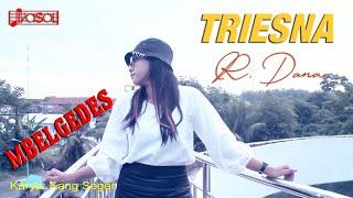 Mbelgedes - Triesna R Dana  DJ KD   Wis Cukup Sakmene