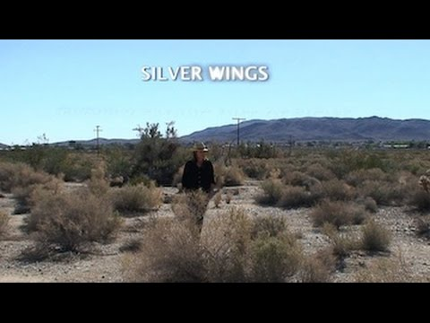 Silver Wings (Lyric Video)
