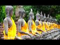 Musica Relaxante: Som Para [video]