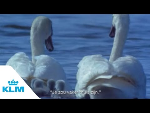 Compilatie Zwaan reclames (KLM 90's)