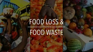FAO Policy Series: Food Loss & Food Waste