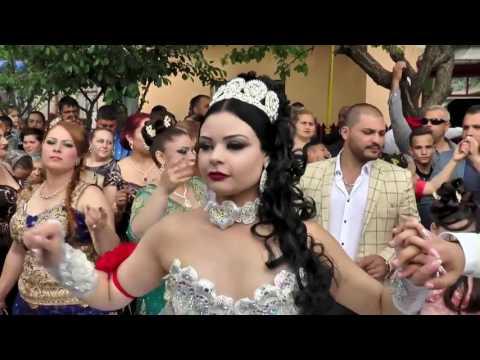 Nunta In Stil Indian Video Watch Hd Videos Online Without Registration