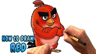 How to Draw Red from The Angry Birds Movie (NARRATED)