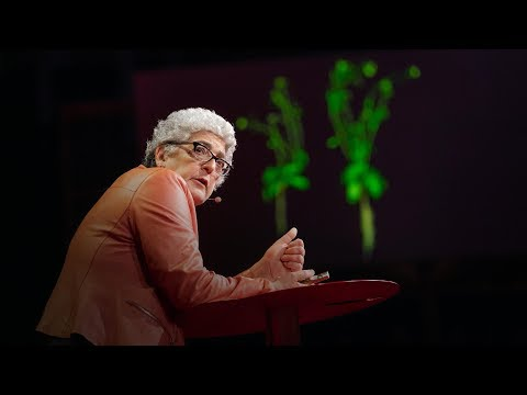 download song How supercharged plants could slow climate change | Joanne Chory free