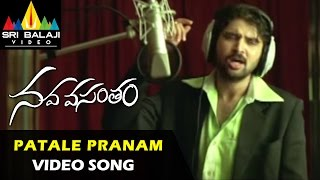 Nava Vasantham Songs    Patale Pranamani Video Song    Tarun, Priyamani