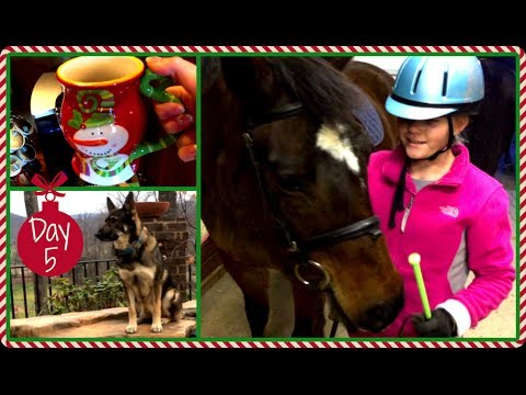 Vlogmas 2013 ❄ Day 5 Going to the Barn with Jelly!