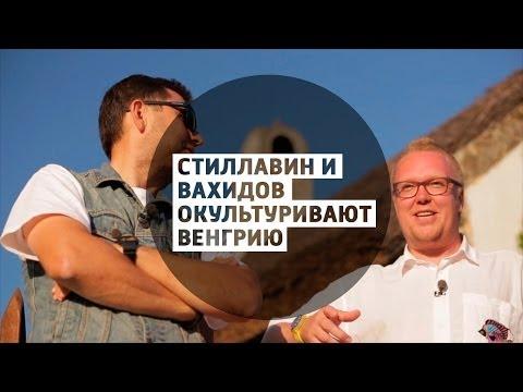 Стиллавин и Вахидов окультуривают Венгрию