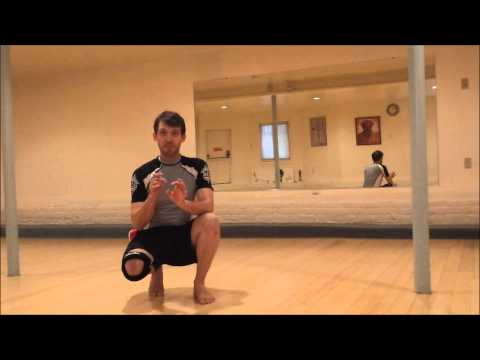Great Eagle Claw Kung Fu Leg Training - Tan Tui part 2!! Image 1