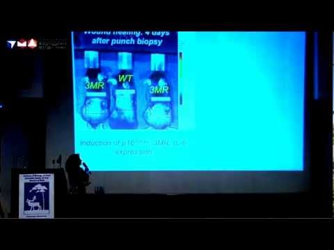 Judith Campisi, Conference  «Genetics of Aging and Longevity» 2012