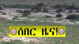 Patriotic Ginbot 7 Daily Ethiopian News April 12, 2017