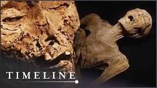 Plague Mummies (Mummy Mysteries Documentary) | Timeline