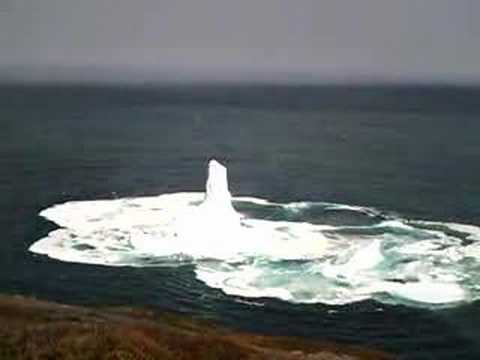 Download Lagu Iceberg collapses off of Signal Hill - North Trail.mp3
