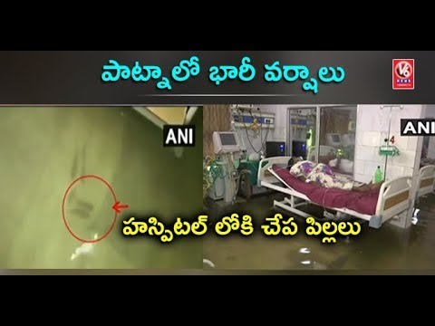 Patna Medical College Hospital's ICU Flooded With Rainwater, Fish Swim Around Hospital | V6 News