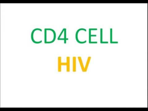 USMLE: What you need to know about CD4 CELL HIV by UsmleTeam