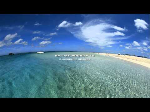 Nature Sound 15 - THE MOST RELAXING SOUNDS - Music Videos